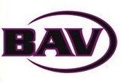 Bav Logo